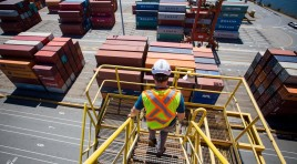 Black Sea ports witness growth in container traffic